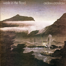 Wade in the Flood